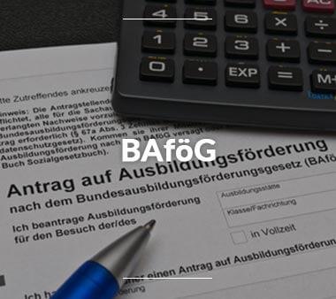 Meister BAföG BAföG Überblick