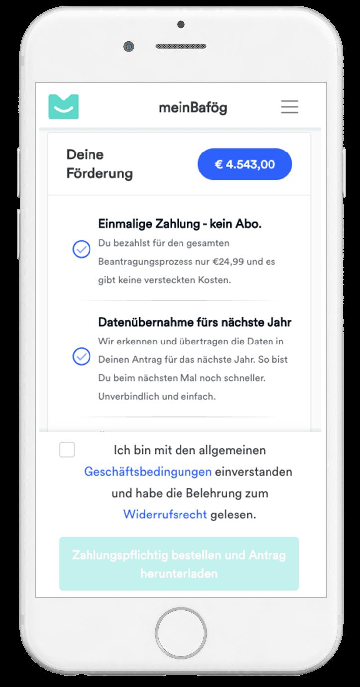 meinbafoeg bafoeg-live-rechner